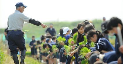 田んぼの教室写真