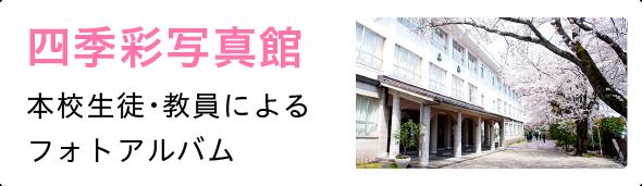 四季彩写真館